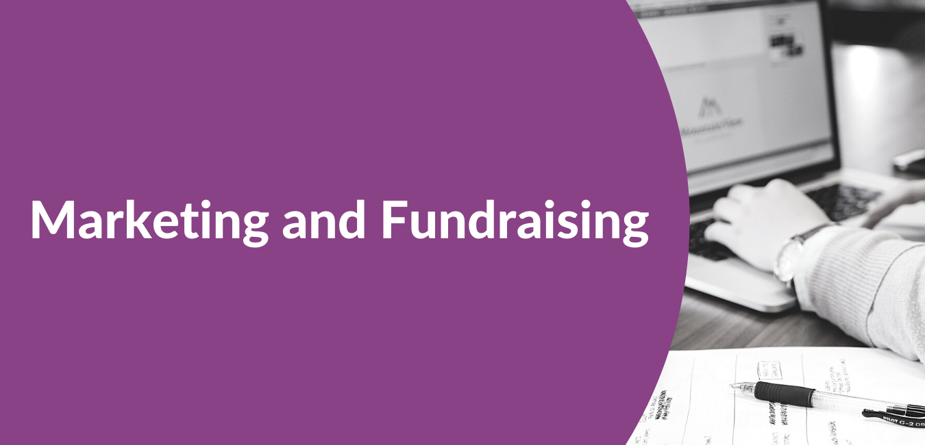 Marketing and Fundraising header for VIable Corporate Services